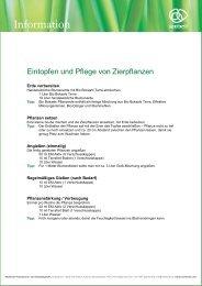 Eintopfen_und_Pflege_von_Zierpflanzen_1.pdf [232 KB] - Multikraft