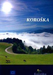 Microsoft Word - koroska_300_6.doc - Meziska dolina
