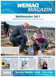 WEMAG Magazin 2010 01 - Wemag AG