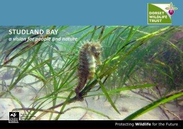 FINAL Studland Bay Vision Booklet [5]
