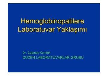 Hemoglobinopatilere Laboratuvar Yaklaşımı - Düzen Laboratuvarlar ...
