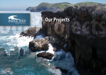 Our Projects - Doxa Deo