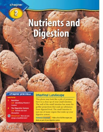 D: Chapter 2: Nutrients and Digestion - McGraw-Hill Higher Education