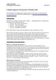 Lathund Bisyssla – rapporter - Lunds universitet