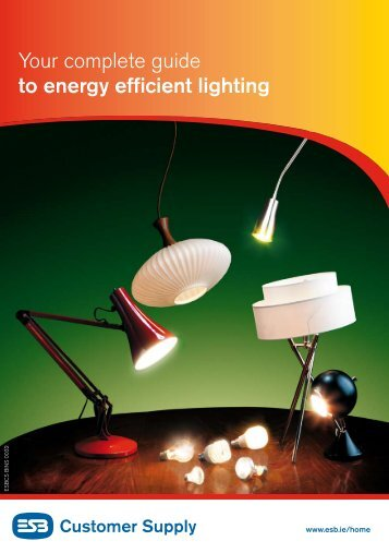 ESB Guide to Energy Efficient Lighting