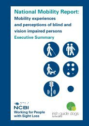 Executive Summary [PDF, 1MB] - National Council for the Blind of ...