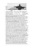 Nr.3 (Mai,Juni 2005) - Ritter von Kalebuz - Page 3