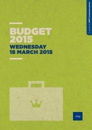 Budget-2015-MHP-Analysis