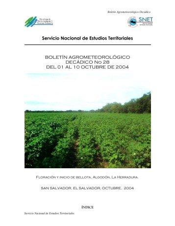 Servicio Nacional de Estudios Territoriales BOLETÍN ...