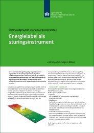 Energielabel als sturingsinstrument - Nieman Raadgevende ...
