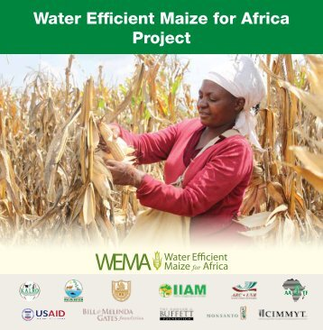 Water efficient Maize for Africa (WeMA) - African Agricultural ...