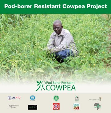 Cowpea productivity improvement project brief - African Agricultural ...