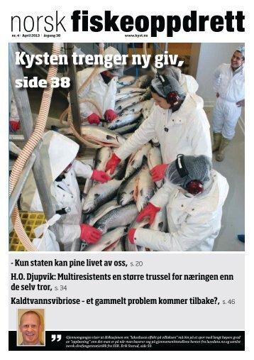 NF4 2013 50-53.pdf - Norske Lakseelver