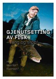 GJENUTSETTING AV FISK - Norske Lakseelver