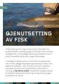 GJENUTSETTING AV FISK - Norske Lakseelver - Page 4