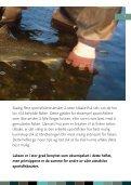 GJENUTSETTING AV FISK - Norske Lakseelver - Page 5