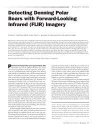 Download - Polar Bears International