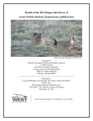 2012 Lesser Prairie-chicken Survey - K-State Research and Extension