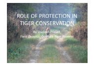 role of protection in tiger conservation - Global Tiger Initiative