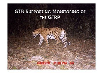 gtf: supporting monitoring of the - Global Tiger Initiative