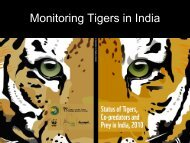 Monitoring Tigers in India - Global Tiger Initiative