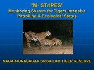 M- STrIPES - Global Tiger Initiative