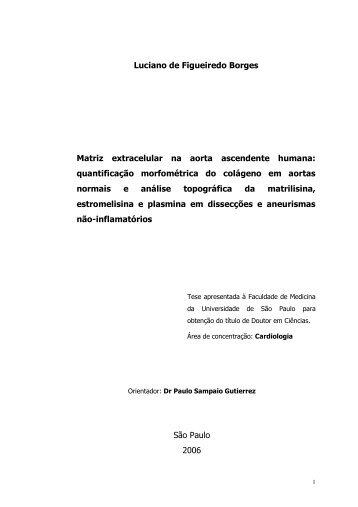 Luciano de Figueiredo Borges Matriz extracelular na aorta ... - Incor