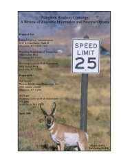 Pronghorn Roadway Crossings: A Review of Available ... - WEST, Inc.