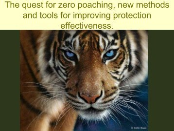 Law enforcement monitoring - Global Tiger Initiative
