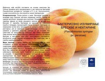 Pseudomonas persicae brosura 1 - Cost 873