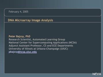 DNA Microarray Image Analysis - University of Illinois at Urbana ...