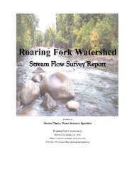 Stream Flow Survey Report - Roaring Fork Conservancy