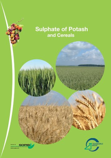Cereals [PDF, 492.15 Kb] - Tessenderlo Group