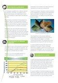Sulfate de Potassium et le Coton - Tessenderlo Group - Page 2