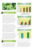Sulfate de Potassium et le Coton - Tessenderlo Group - Page 3