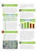 Le Sulfate de Potassium et les Plantes à Bulbes - Tessenderlo Group - Page 2