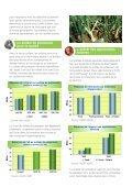 Le Sulfate de Potassium et les Plantes à Bulbes - Tessenderlo Group - Page 3