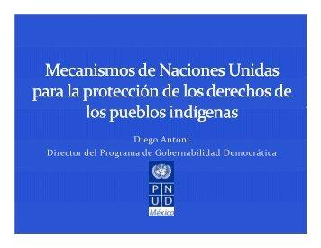 Diego Antoni Director del Programa de Gobernabilidad ... - CINU
