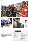 godhjerta råskinn - Jernbaneverket - Page 3