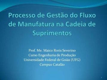 Prof. Ms. Maico Roris Severino - UNEMAT