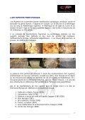 chemins de l'art rupestre préhistorique - Page 2