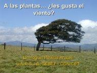 Â¿A las plantas les gusta el viento?