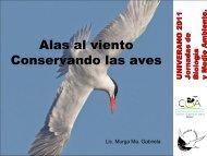 Alas al viento Conservando las aves