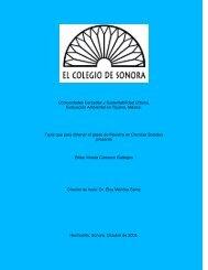 Comunidades cerradas y sustentabilidad urbana - Topofilia