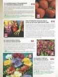 7aniZ6aLg - Page 4