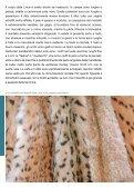 Alcuni estratti del libro - Guerra Edizioni - Page 7