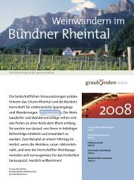 Bündner Rheintal - Wein Fläsch