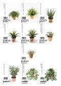 Plants & Pots 2015 - Page 2