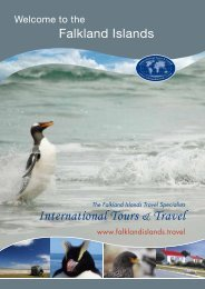 International Tours & Travel - Falkland Islands