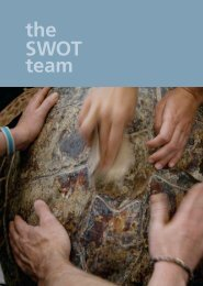 the SWOT team - The State of the World's Sea Turtles